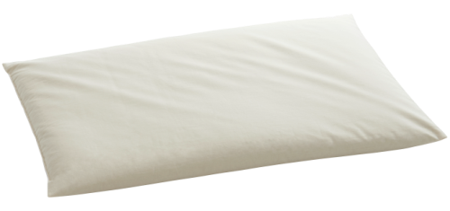 OREILLER DE MILLET sans enveloppe